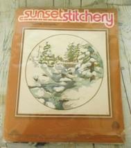 Sunset Stitchery Winter Snowfall Embroidery Wool Kit 16x16 Charlene Gerrish - $12.53
