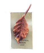 Vintage real leaf copper beech john griffin brooch pin - $49.89