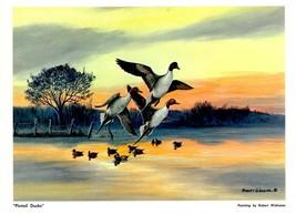"DUCKS UNLIMITED PRINT ""PINTAIL DUCKS"" Canadian Geese Mallard Pintail DU - $4.94"