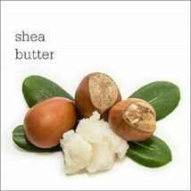 Plum Olive & Macadamia Rich Nourish Conditioner Green 300 ml image 4