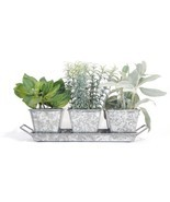 Organic Herb Garden - Planter Herb Seeds Kit (Galvanized) w/ 3 galvanize... - €35,02 EUR