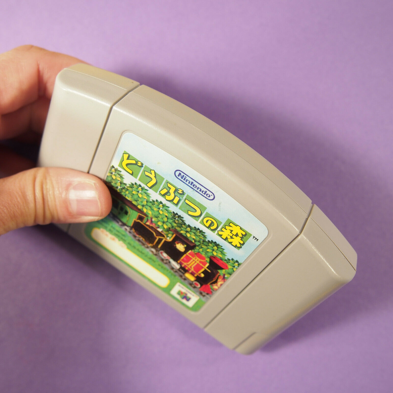 Animal Crossing / Doubutsu no Mori (Nintendo 64 N64, 2001) Japan Import image 3