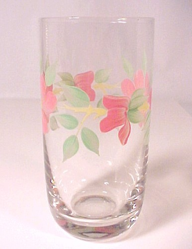 5 Peach Blossom Ice Tea Drinking Glasses Tumbler 12 oz Set of Clear Hand Painted
