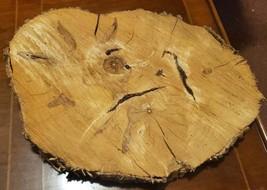Box Elder/Ash Leaf Maple Wood slab - $19.99