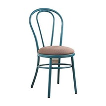 Acme Furniture Cooper Teal Side Chair (Set Of 2) - $462.19