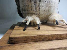 Hawaiian Pueo Owl Sculpture Figurine Handwoven Fabric Yarn Fiber Art Spitz-Nagel image 6