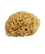 Sea Wool Natural Sea Sponge by Modern Alchemy - $9.00
