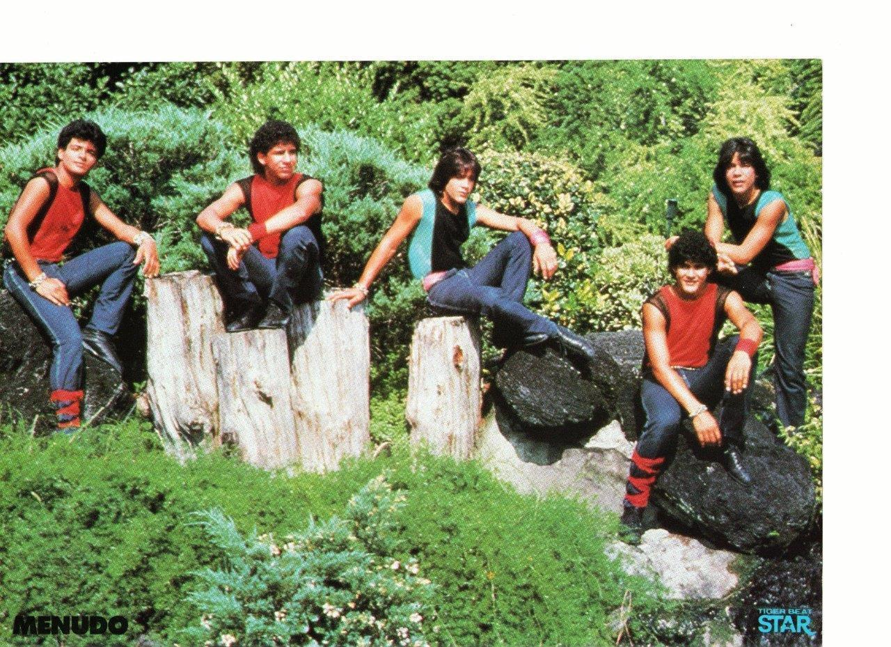 Menudo Duran Duran teen magazine pinup clipping sitting on tree stumps Rockline