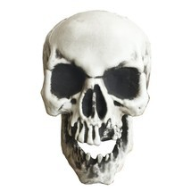 Fake Skull Head Broken Teeth Life Size Halloween Decoration Plastic Part... - $413,27 MXN