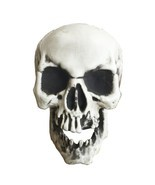 Fake Skull Head Broken Teeth Life Size Halloween Decoration Plastic Part... - £15.84 GBP