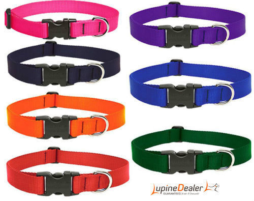 "LUPINE DOG COLLAR 1/2"" Orange Red Black Pink Orange Purple Green Chew Proof"