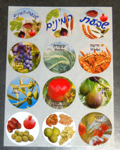 Judaica Hebrew 7 Seven Species 120 Stickers Children Teaching Aid Israel