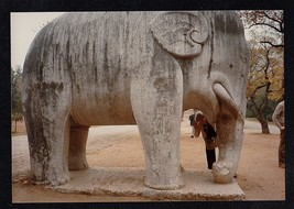 Vintage Photograph Huge Stone Elephant Site of Ming Emperor Tomb - China - $5.94