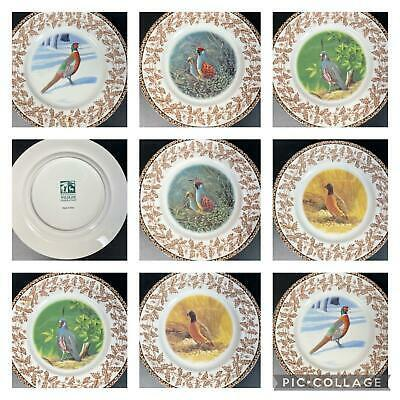 Primary image for 8 National Wildlife Federation Plates WILD BIRDS w/Oak Leaf Acorn Pattern 8""