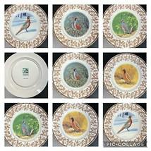 8 National Wildlife Federation Plates WILD BIRDS w/Oak Leaf Acorn Patter... - $79.19