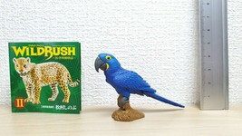 Kaiyodo Capsule Q Museum Wild Rush II MACAW South America Amazon animal ... - $8.81