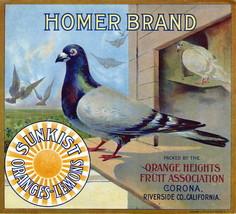 Homer Sunkist Crate Label Art Print  Oranges lemons Corona Riverside CA - $9.87