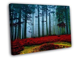 Incredible Autumn Forest FRAMED CANVAS Print - $14.96+
