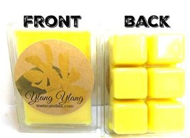 Ylang Ylang 3.2 Ounce Pack of Soy Wax Tarts - Scent Brick, Wickless Candle - €3,36 EUR