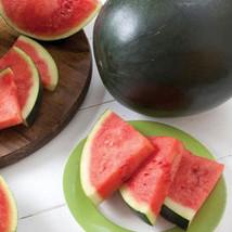 HeirloomSupplySuccess 10 Heirloom Florida Giant Watermelon seeds - $3.99