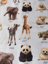 Baby Animal Friends - 100% Cotton Fabric by John Butler for Elizabeth's ... - $4.46+