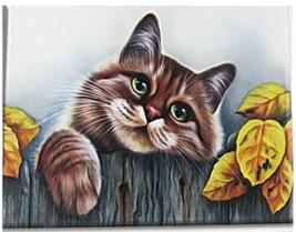 Needlepoint Cross Stitch Kit Cuddle Cat On The Fence APT Hobby Products ... - $29.26