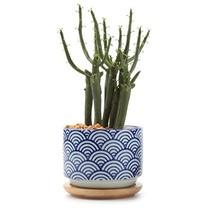 T4U 3 Inch Ceramic japanese Style Serial No.3 succulent Plant Pot/Cactus... - $12.11