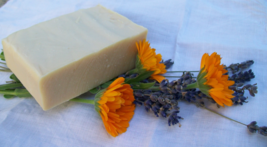 Lavender with Calendula goat milk soap, olive oil, shea butter, by Jewel... - $5.50
