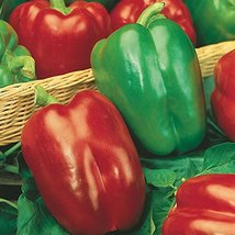 400 Seeds California Wonder Bell Pepper, Heirloom, NON-GMO - $6.93