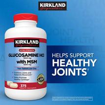 Kirkland Signature Glucosamine HCI 1500 mg with MSM 375 Tablets Free Shi... - $22.92