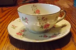 Theodore Haviland Delaware Pattern Cup and Saucer - $7.95