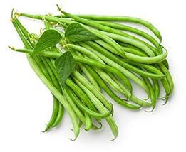 Sow No GMO Bean Pole Kentucky Wonder Green Snap String Beans Non GMO Heirloom Ga - $5.91