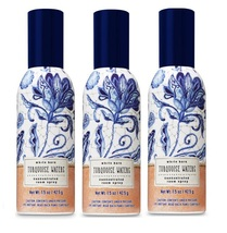 Bath & Body Works Turquoise Waters Concentrated Room Spray 3 Pack - $22.75