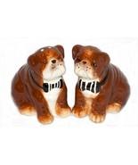 Ceramic Salt and Pepper Shaker Set American Atelier British Bulldog Dog - $18.80