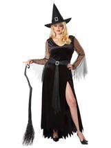 California Costumes Women's Size Rich Witch Plus Costume, black/silver, ... - $58.28