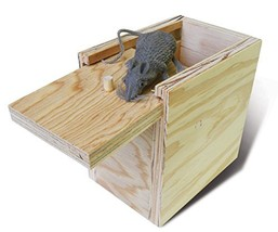 Mouse In a Box - $33.06