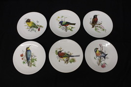 "6 Pc Vintage CASTEL Limoges France Fine China Assorted BIRD 7.5"" Plates - $69.99"