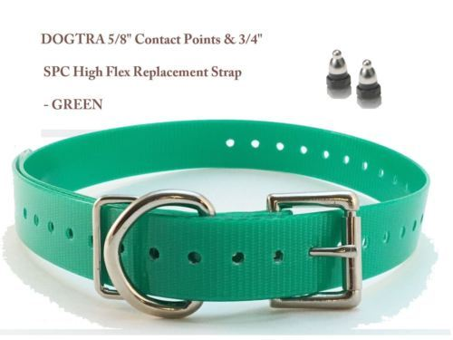 "DOGTRA 5/8"" Contact Points & 3/4"" SPC High Flex Replacement Strap - Green"