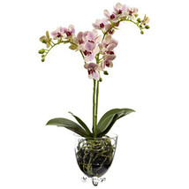 Raspberry Orchid Elegance  Arrangement  - $89.99
