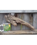 DRIFTWOOD FOR AQUARIUM CRAFTS WALL ART REPTILES FROM ROCKY MOUNTAINS USA... - $7.95