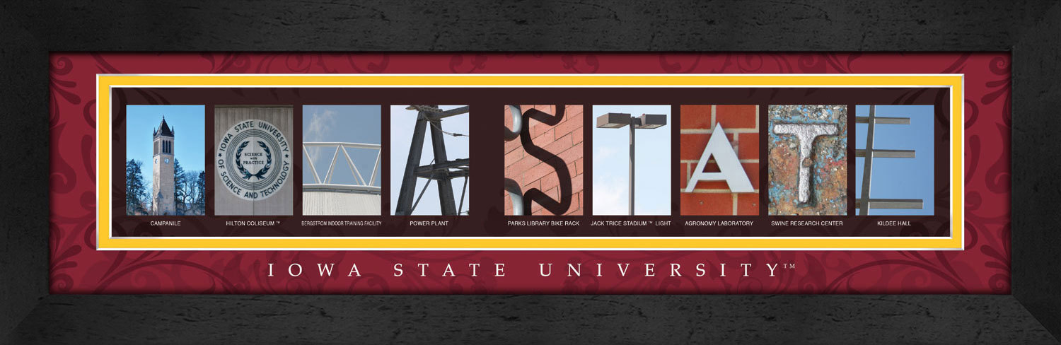 Primary image for Iowa State University Officially Licensed Framed Campus Letter Art