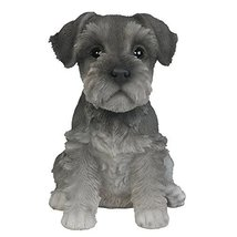 Adorable Seated Mini Schnauzer Puppy Collectible Figurine Amazing Dog Li... - £15.16 GBP