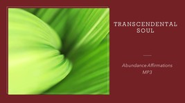 Abundance Affirmations mp3 - $2.49