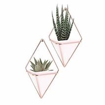 Hanging Vase,LANMU Air Plants Pots,Hanging Wall Decor,Plant Holder,Hangi... - $490,77 MXN