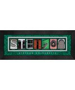 Stenson University Officially Licensed Framed Campus Letter Art - $39.95