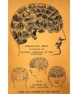 Vintage Phrenology Head Brain Map Chart Print Poster - $21.99