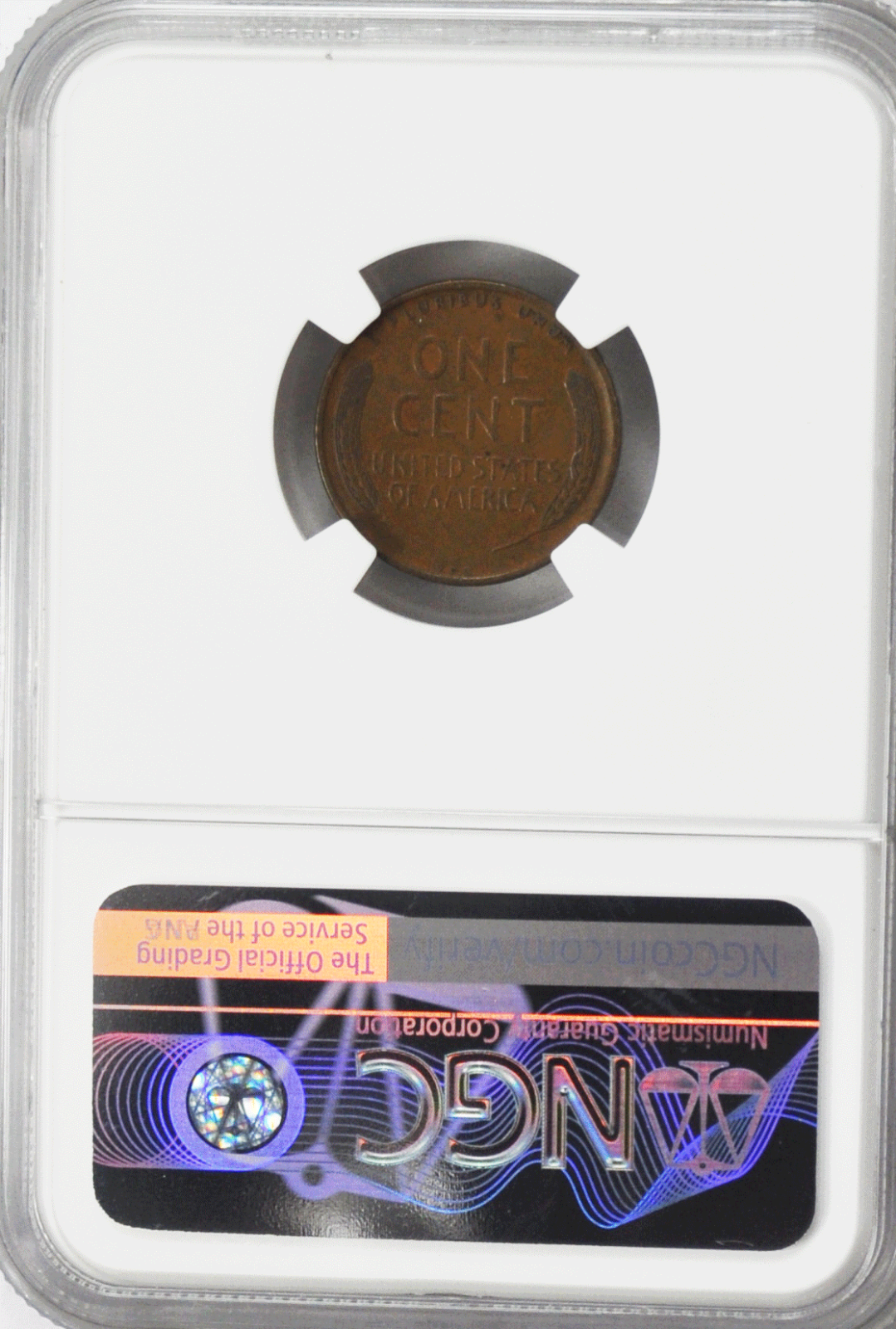 1909 S VDB 1c One Cent Lincoln Wheat Penny NGC VF Details Rare San Francisco image 2