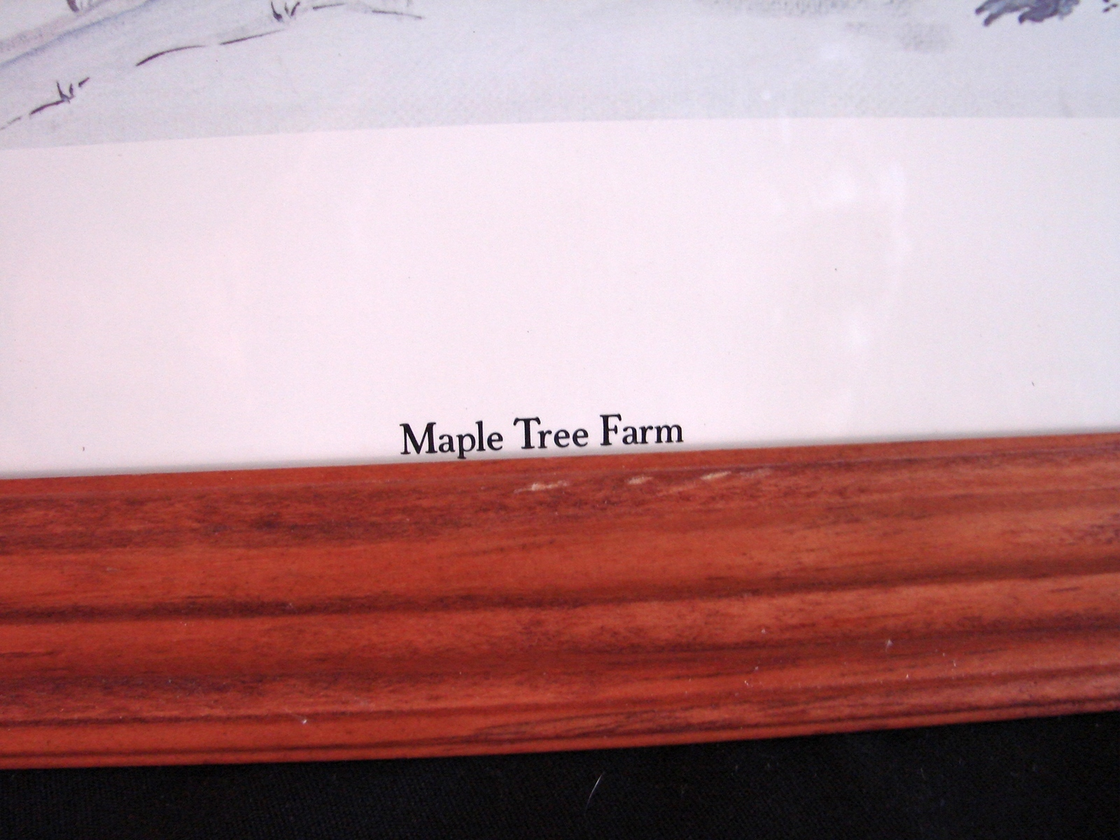Nancy Stewart BASSFORD (1925-2007) Signed, Numbered Print  Title :Maple Tree Far