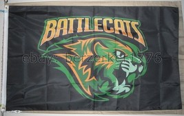 Battle Cats He-Man and the Masters of the Universe 3'x5' Black Flag Banner MOTU - $25.00