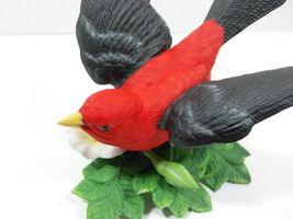 THE LENOX GARDEN BIRD COLLECTION Scarlet Tanager (Fine Porcelain 1992) image 9